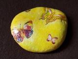 Πεταλούδες στην πέτρα